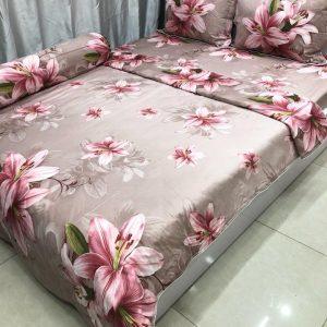 Chăn Ga Cotton Lụa Standard