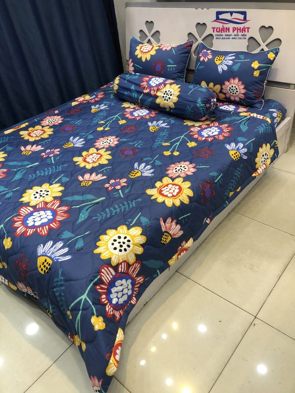 chăn drap cotton Hàn Quốc