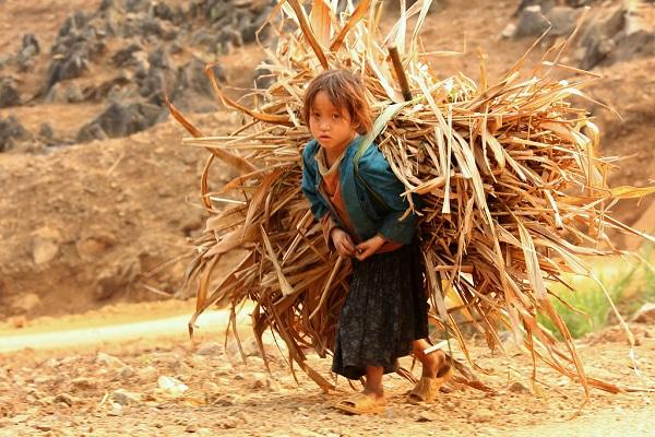 Trẻ con lao động nặng nhọc sẽ gây đau lưng sau này
